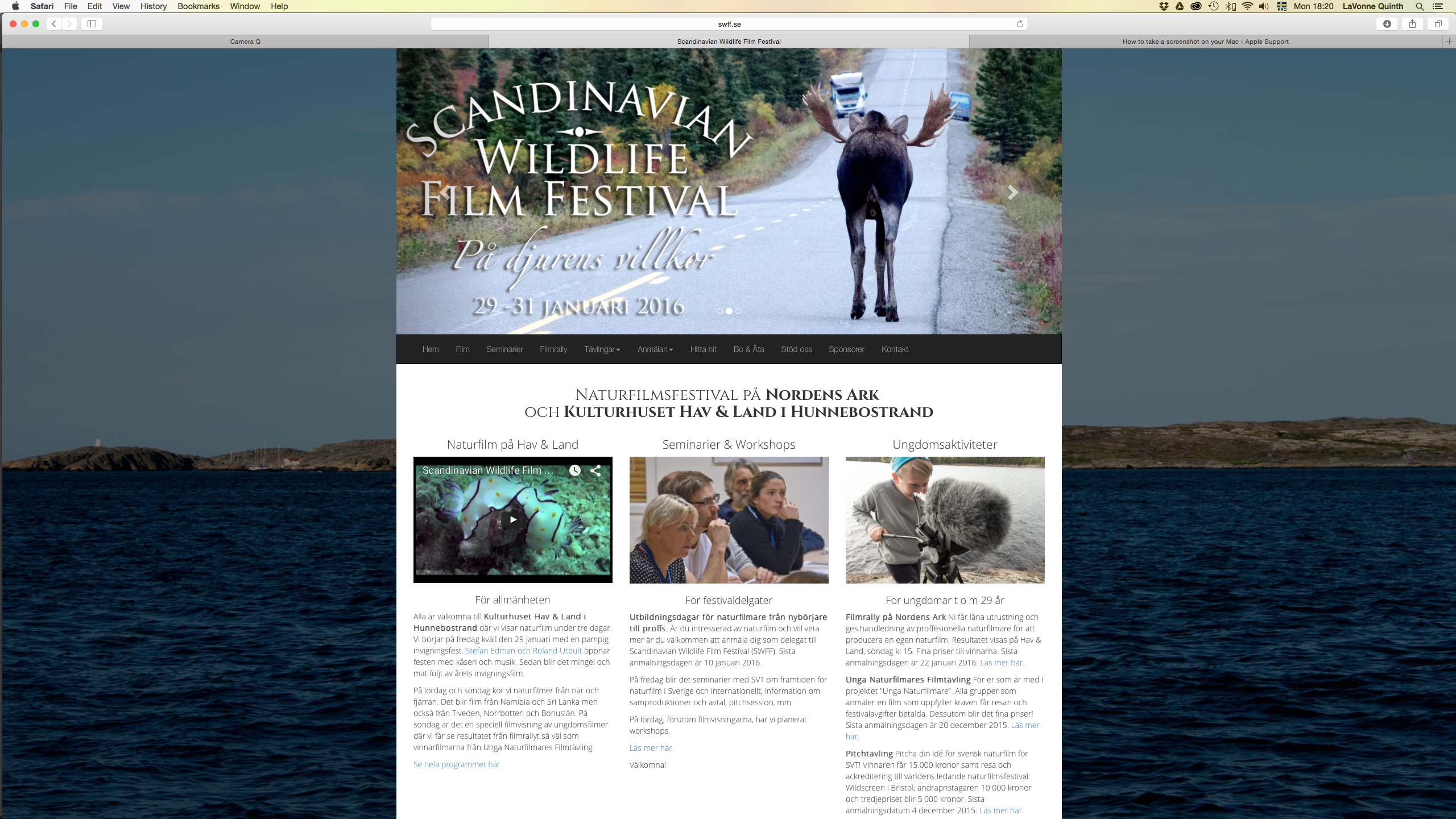 screenshot from www.swff.se - Scandinavian Wildlife Film Festival